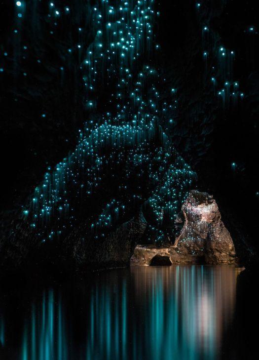 waitomo_caves_4